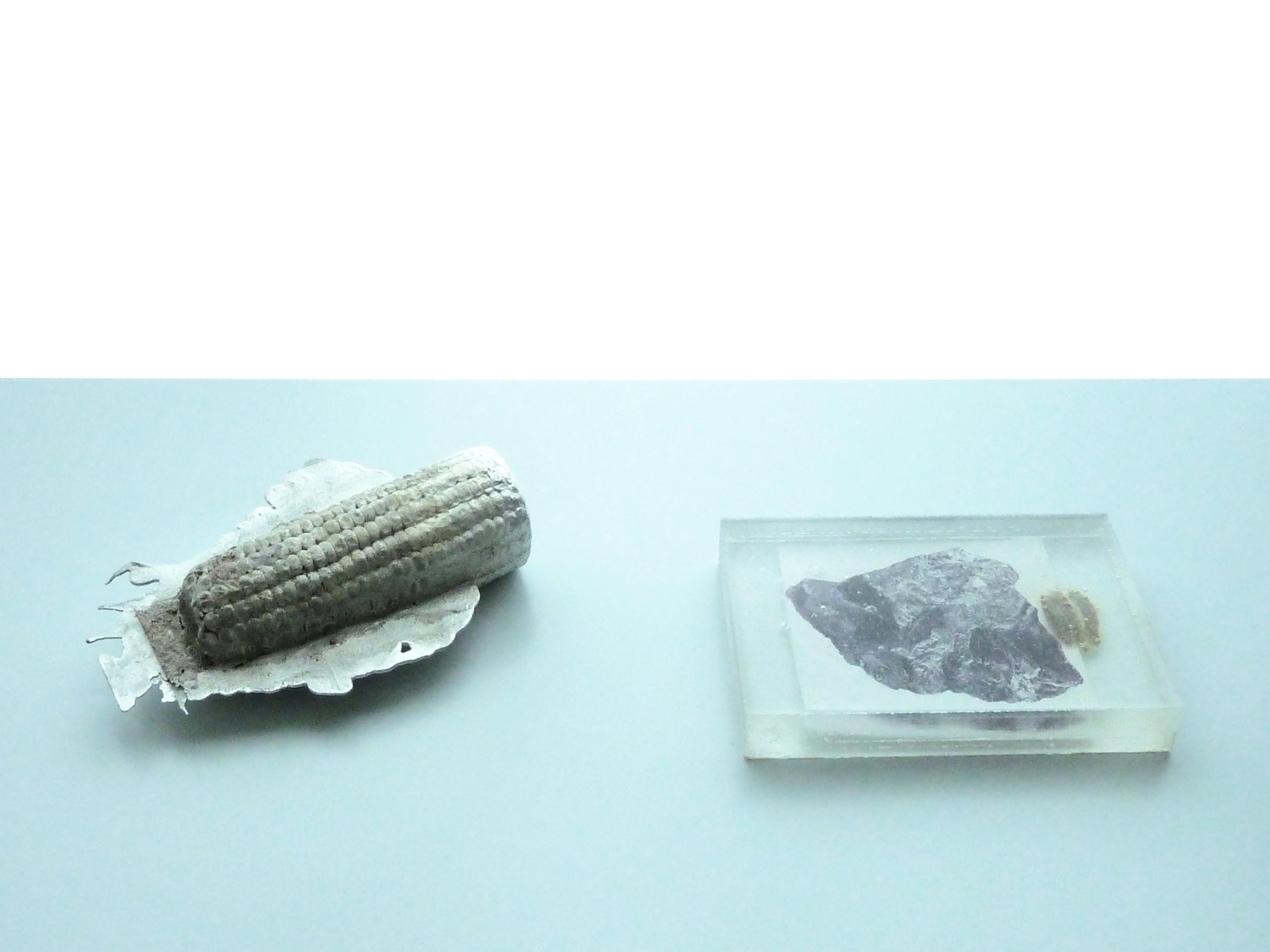 susi_gelb_prime_material11_capsule017_web